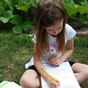 CLCS Raised bed gardens journaling 2016