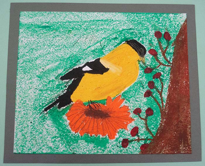 CLCS Art Show pastel bird drawing