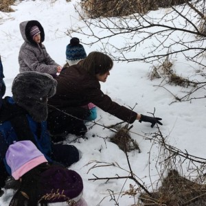 CLCS Environmental Education animal tracks 1st & 2nd grade 2017