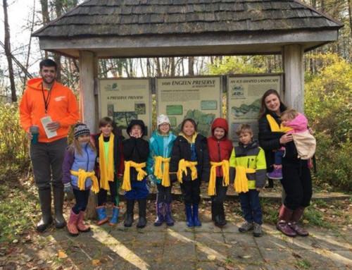 Primary B Environmental Education