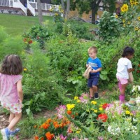 Primary A Environmental Education